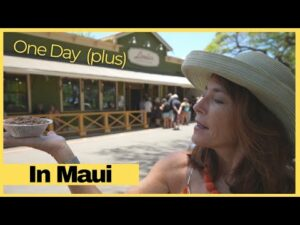 One Day (PLUS) in Maui